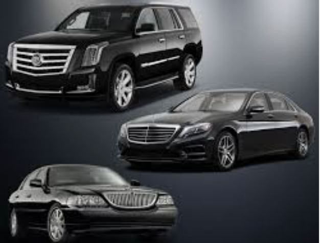 Airport Luxury Ground Transportation Service 45.59523 -93.33265